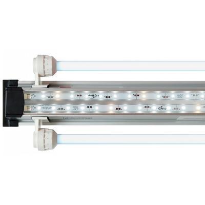 Светильники Биодизайн - купить в интернет-магазине Амигофиш