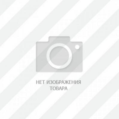 Lda-07 Кактус Ред Фин (Pseudacanthicus Leopardus)