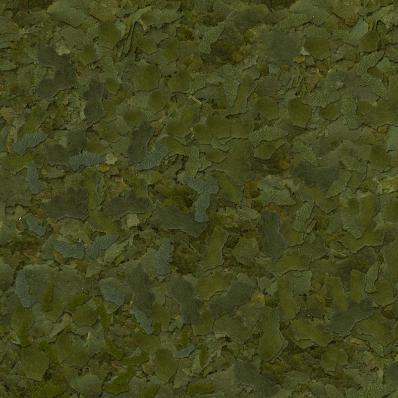Корм для рыб SERA FLORA NATURE 100 мл (22г)