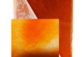 Коловратка замороженная брикете  0,5 кг купить на Амигофиш