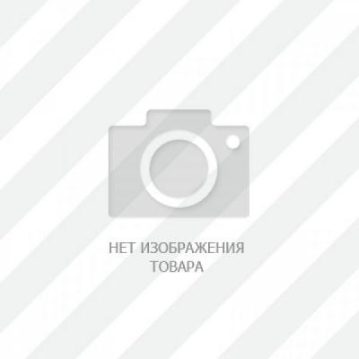 Акантикус Тигровый (Acanthicus Sp)
